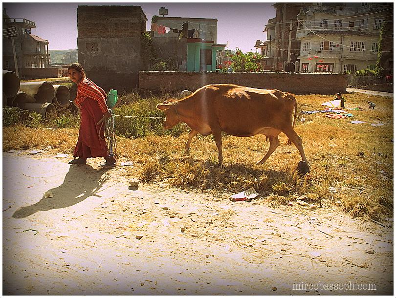 IMG_0595Kathmandu