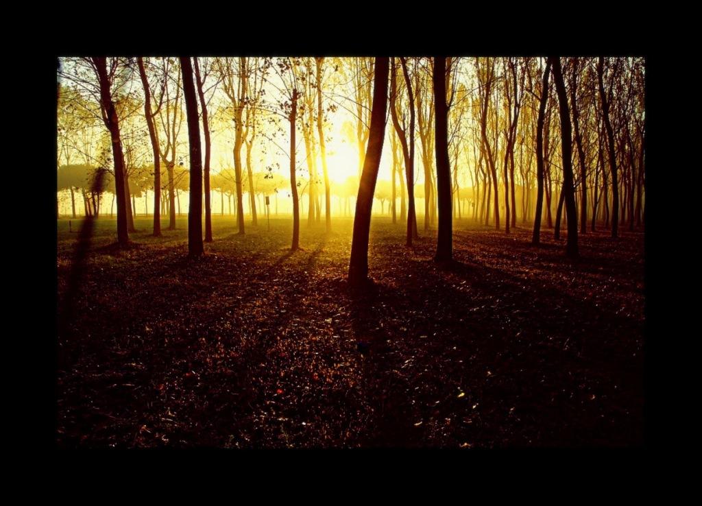 20111027 jesolo autunno0017