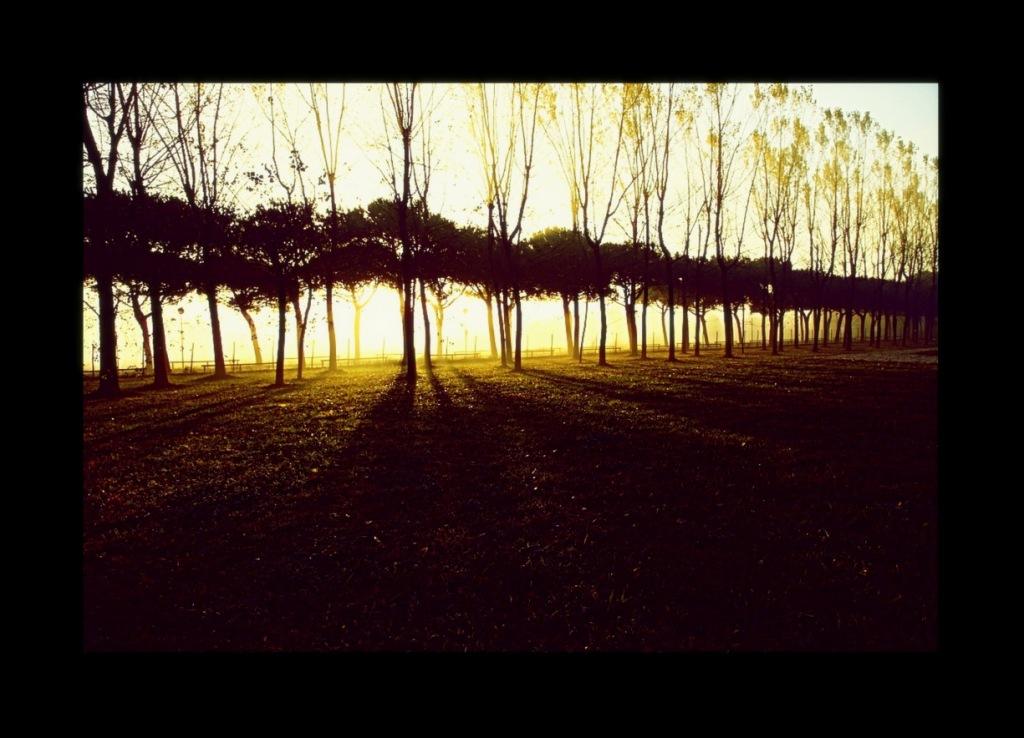 20111027 jesolo autunno0020